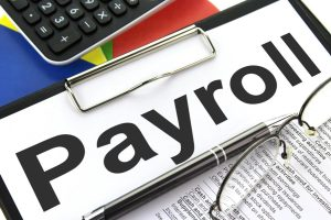 Employee Payroll PAYE services