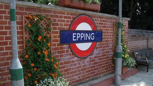 Accountants in Epping